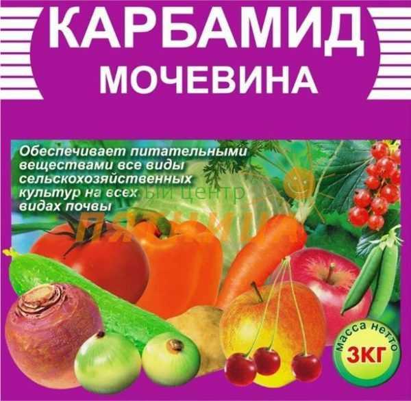 podkormka-pomidorov-v-teplitse-foto-video-chem-udobryat-tomatyi-v-teplitse-27