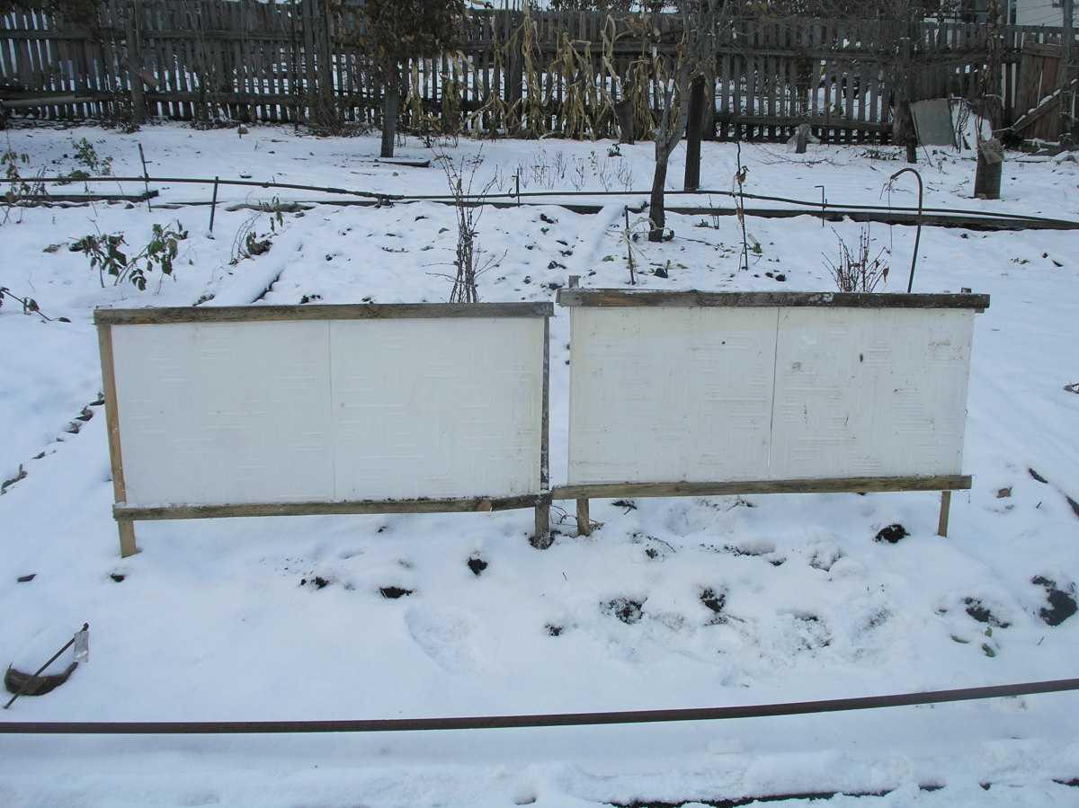 rabotyi-v-sadu-v-yanvare-foto-video-sezonnyiy-kalendar-rabot-na-yanvar-4