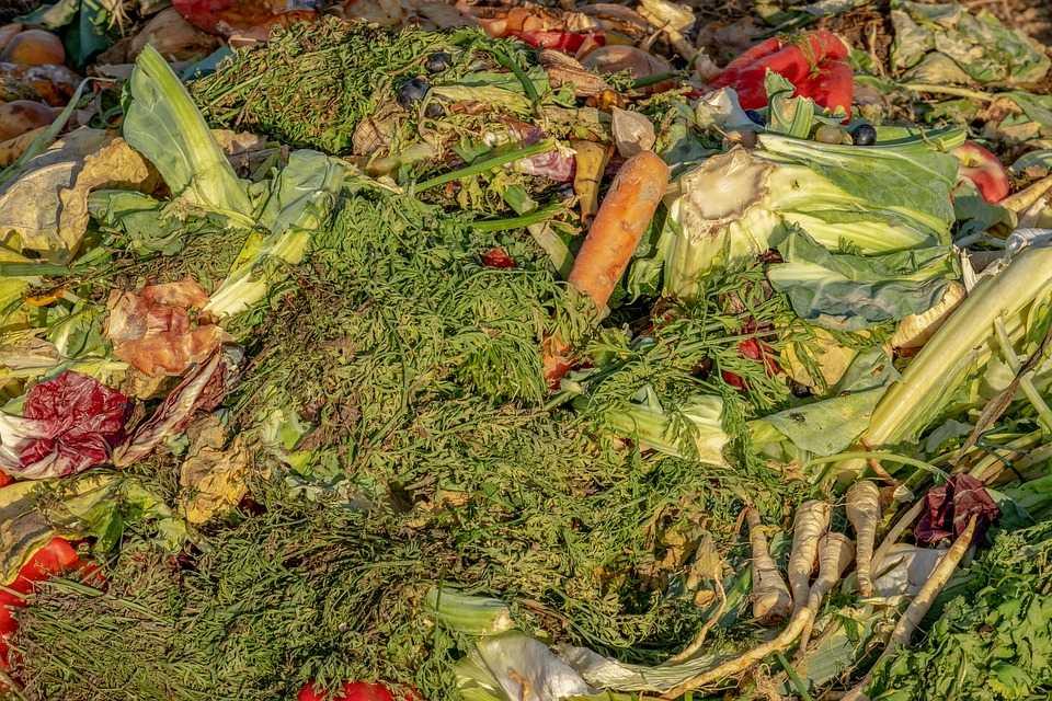kompostnyiy-yashhik-foto-video-kak-sdelat-kompostnuyu-yamu-svoimi-rukami-50