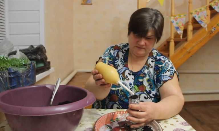 rassada-v-domashnih-usloviyah-foto-video-sposobyi-posadka-i-uhod-81