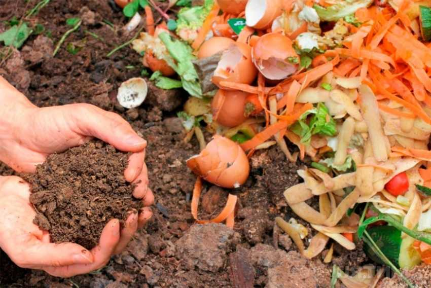kompostnyiy-yashhik-foto-video-kak-sdelat-kompostnuyu-yamu-svoimi-rukami-11