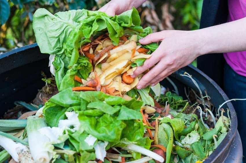 kompostnyiy-yashhik-foto-video-kak-sdelat-kompostnuyu-yamu-svoimi-rukami-8