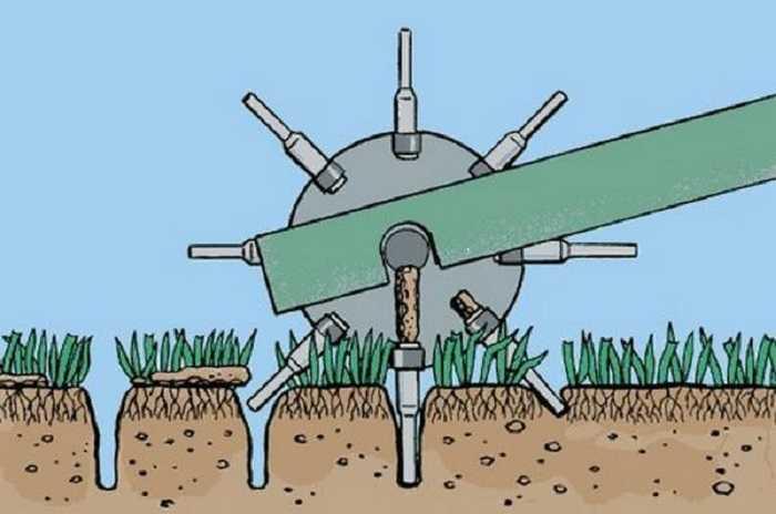 aeratsiya-gazona-foto-video-raznovidnosti-kak-vyibrat-aerator-i-skarifikator-85