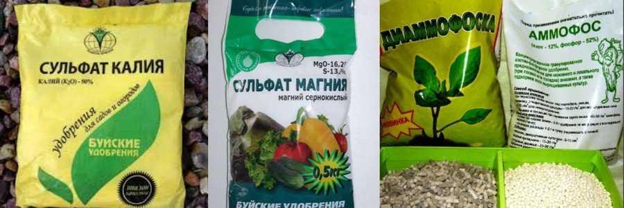 organicheskie-ili-mineralnyie-udobreniya-foto-video-kakie-udobreniya-vyibrat-17