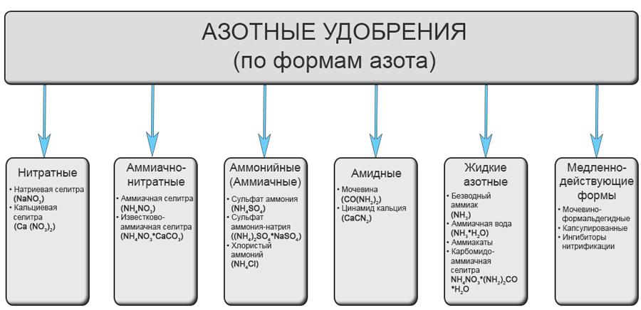 organicheskie-ili-mineralnyie-udobreniya-foto-video-kakie-udobreniya-vyibrat-21