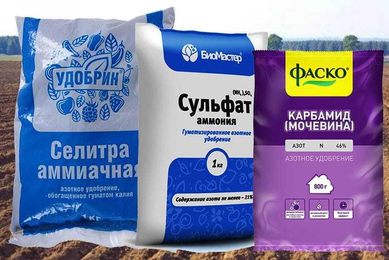 organicheskie-ili-mineralnyie-udobreniya-foto-video-kakie-udobreniya-vyibrat-20
