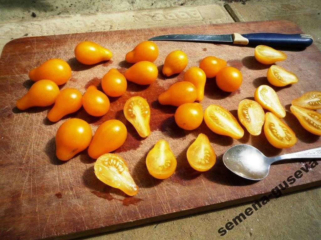 pomidory-cherri-foto-video-luchshie-sorta-opisanie-lichnyj-opyt-vyrashhivaniya-62