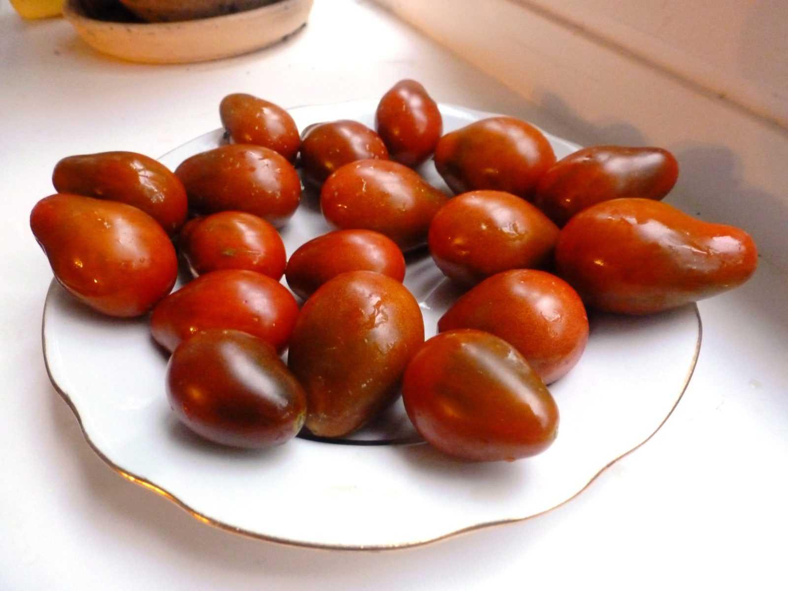 pomidory-cherri-foto-video-luchshie-sorta-opisanie-lichnyj-opyt-vyrashhivaniya-26