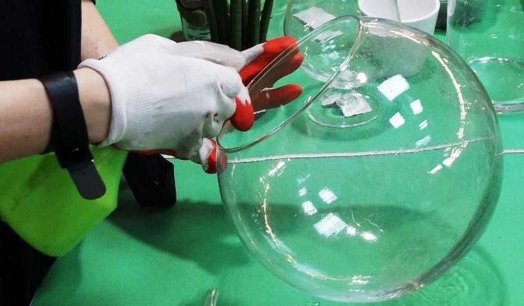florarium-foto-video-vidy-i-ustrojstva-kak-sdelat-svoimi-rukami-88