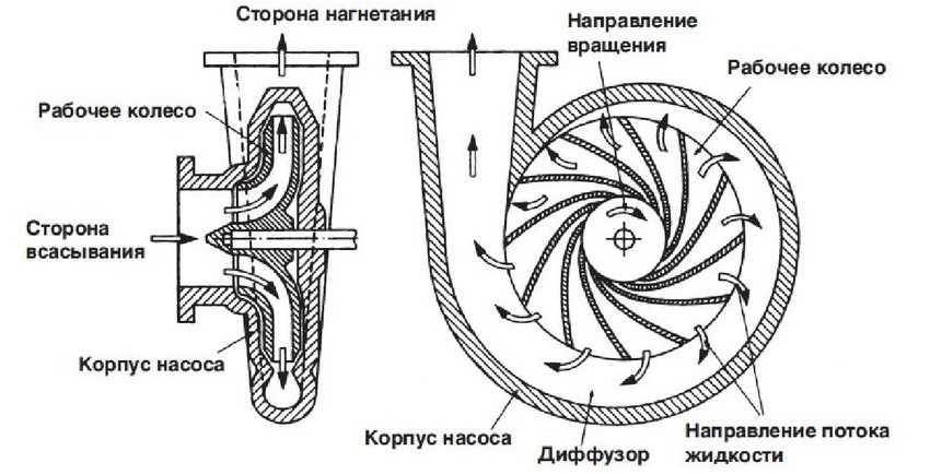 nasos-sadovyj-foto-video-kak-vybrat-pogruzhnoj-nasos-dlya-dachi-17