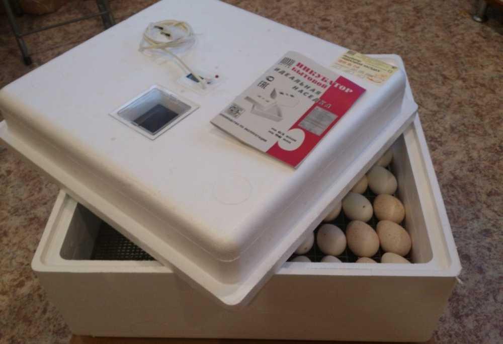 inkubator-idealnaya-nasedka-foto-video-otzyvy-instrukcziya-po-primeneniyu-3