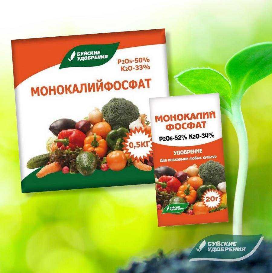 udobreniya-dlya-gazona-foto-video-kak-podgotovit-gazon-k-zime-2