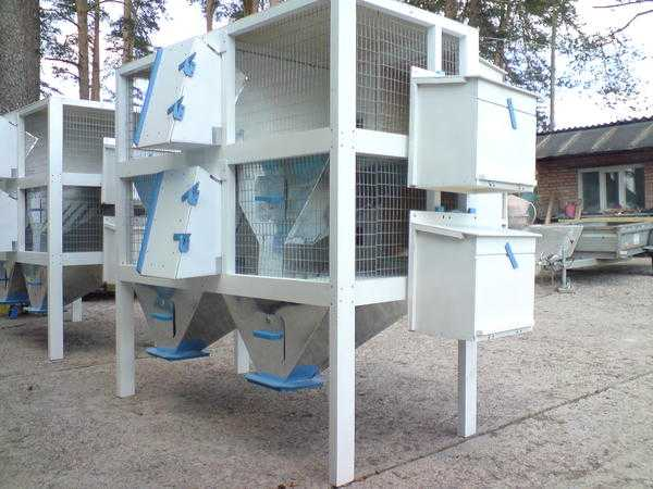 Мини-ферма для кроликов.