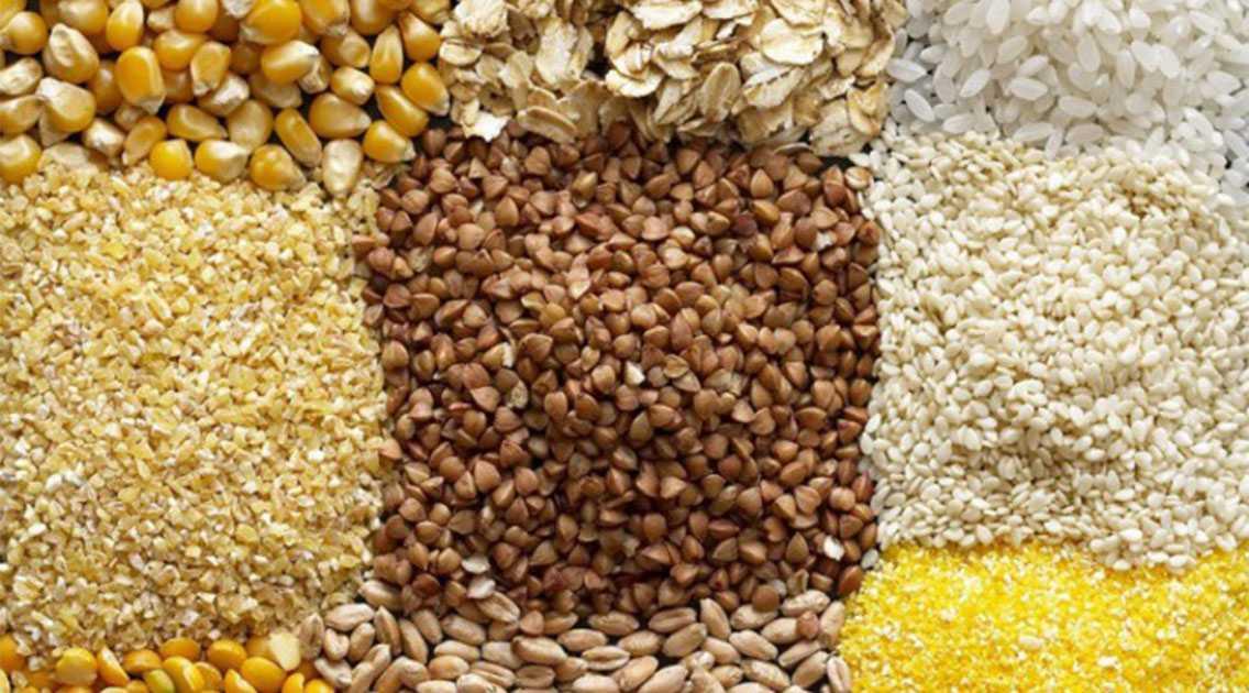 rastenievodstvo-otrasli-razvitie-proizvodstvo-produkczii-vliyanie-sankczij-6