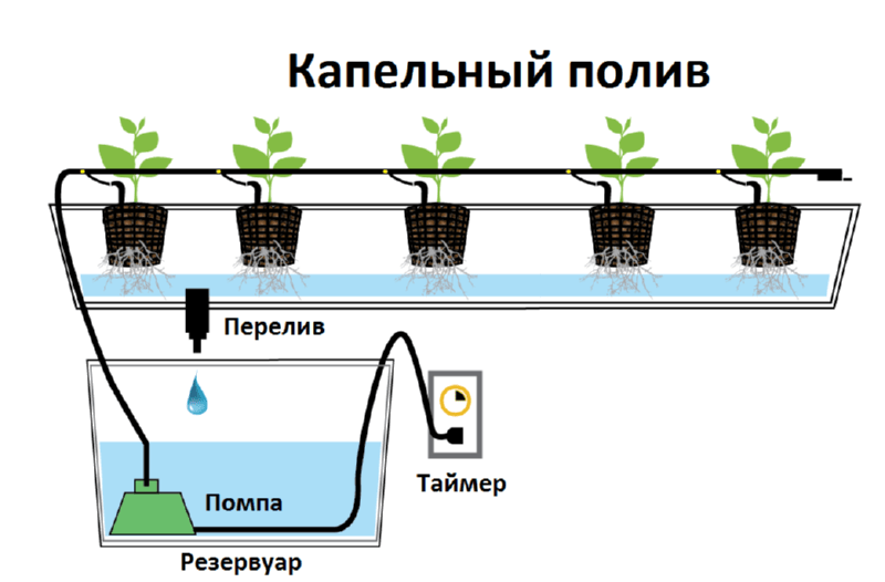 gidroponika-super-sistema-dlya-vyrashhivaniya-rastenij-6
