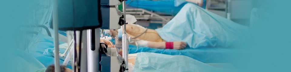chto-delat-esli-ukusil-kleshh-foto-video-simptomy-i-metody-borby-38