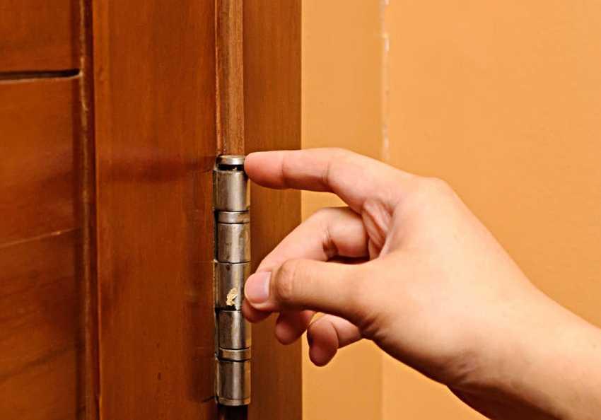 nakladka-na-vhodnuyu-dver-foto-video-raznovidnosti-dekorativnyh-panelej-13