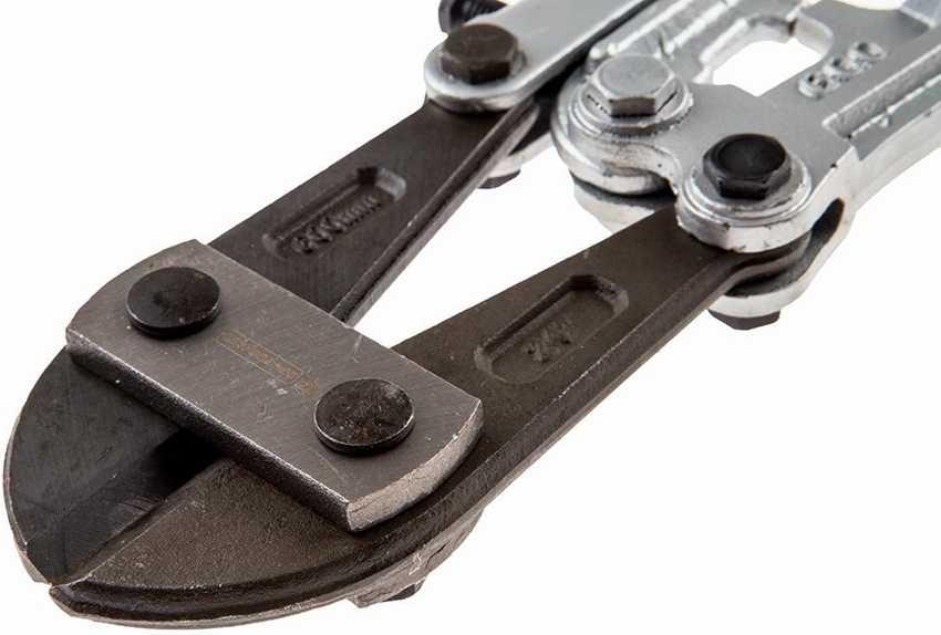 boltorez-foto-video-harakteristiki-i-raznovidnosti-instrumenta-12