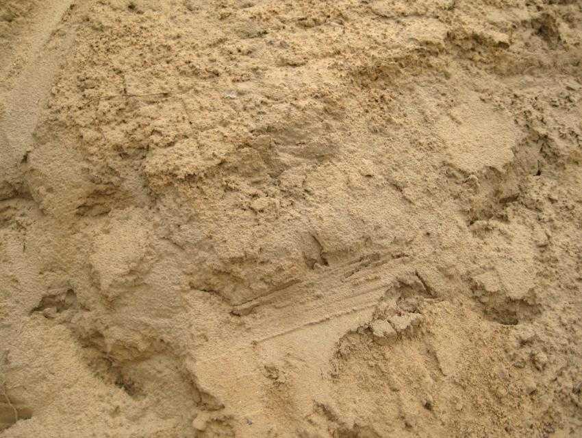 ves-peska-harakteristiki-kotorye-sleduet-znat-pri-zakupke-5