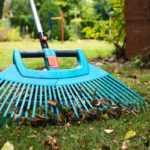 Уход за газоном осенью: как подготовить газон к зиме