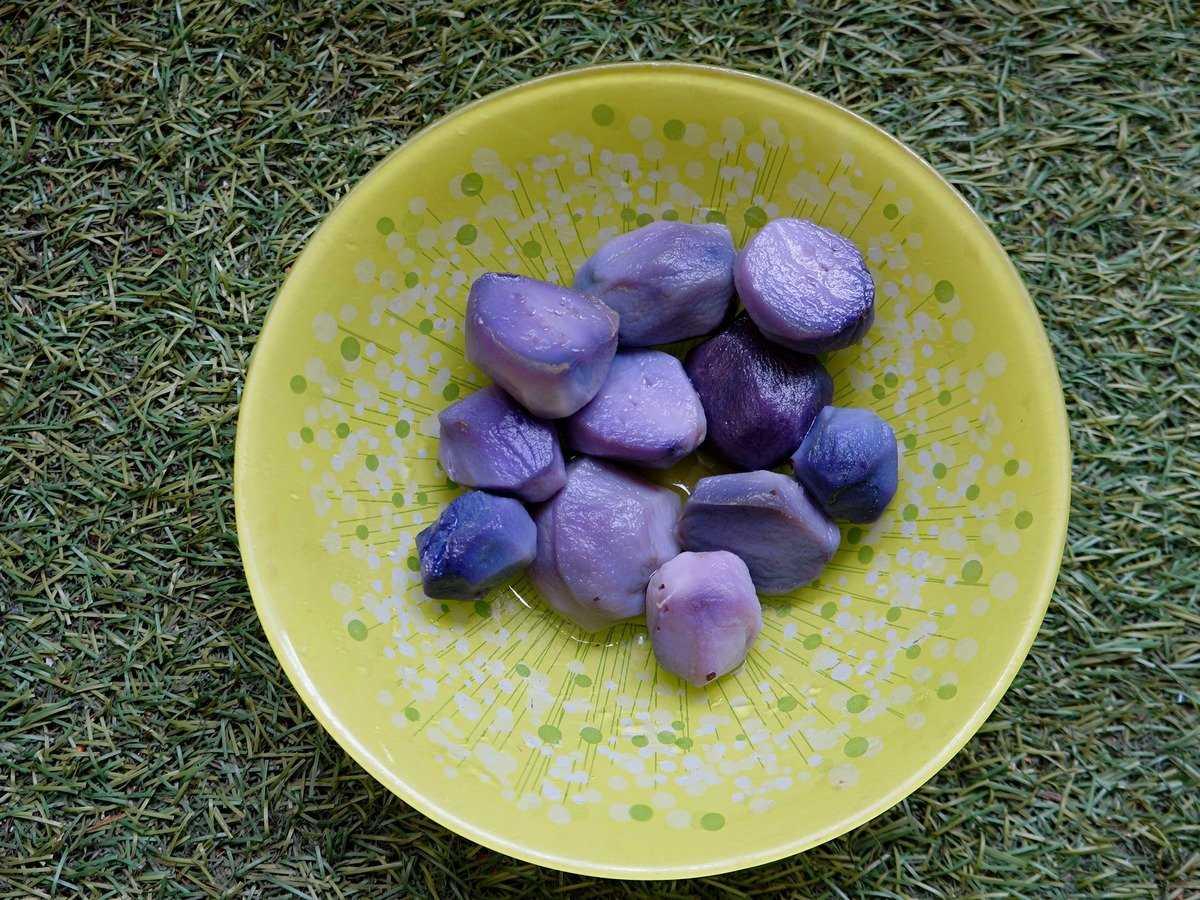 fioletovyj-kartofel-foto-poleznye-svojstva-osobennosti-vyrashhivaniya-5