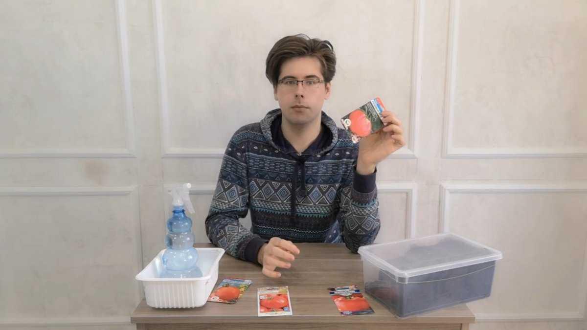 nizkoroslye-tomaty-preimushhestva-vyrashhivaniya-osobennosti-poseva-semyan-na-rassadu-2