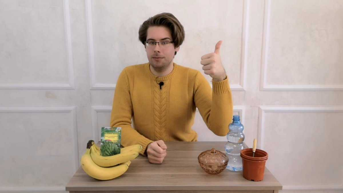 banan-v-domashnih-usloviyah-usloviya-vyrashhivaniya-posadka-i-uhod-1